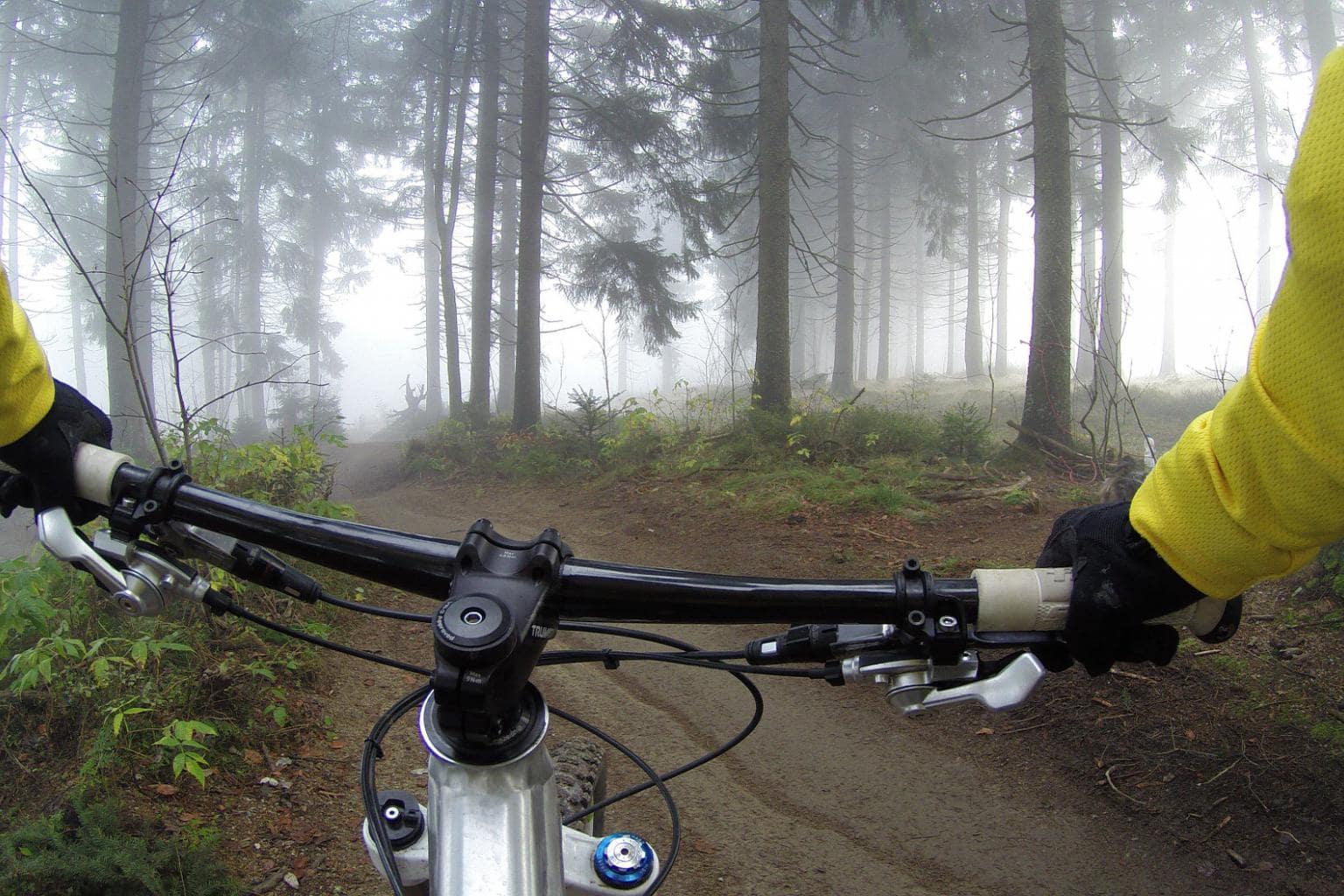 Rando en forêt de Fontainebleau